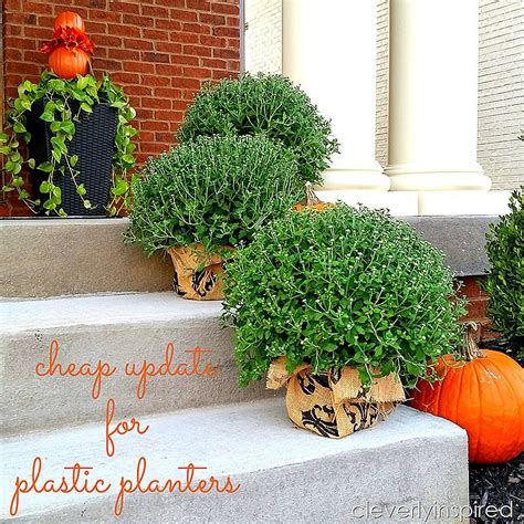 Cheap update for plastic planters - Cleverly Inspired