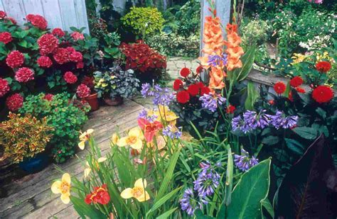 Container Gardening - Container Gardening propose, Ideas ...