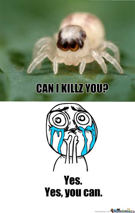 Cute Spider by recyclebin - Meme Center