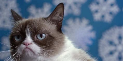 Here's the grouchy trailer for 'Grumpy Cat's Worst ...