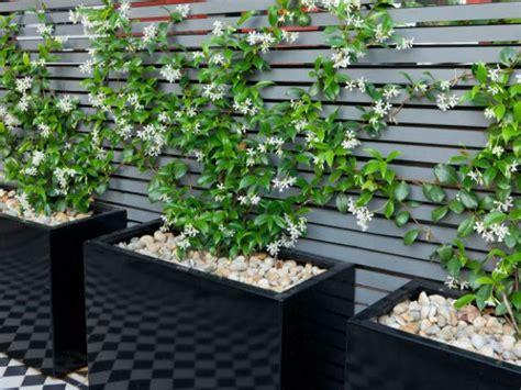 Jardines Pequenos Modernos Descargarimagenescom