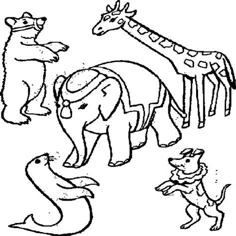 Imagenes De Animales Insectivoros Para Colorear Archivos