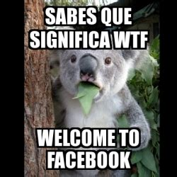Meme Koala - sabes que significa wtf welcome to facebook ...