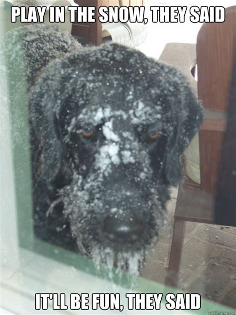 PLAY IN THE SNOW, THEY SAID IT'LL BE FUN, THEY SAID - Sad ...
