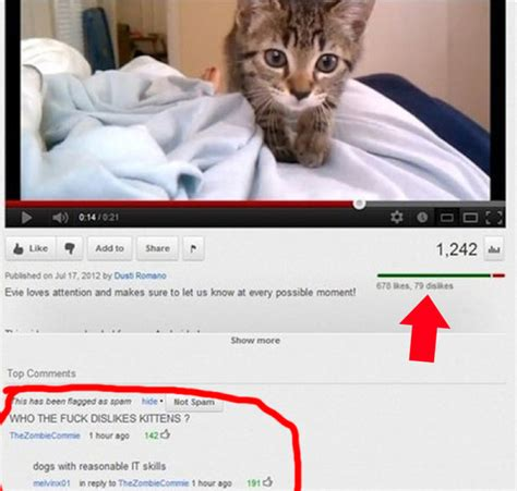The 25 Funniest YouTube Comments Of The Year - BuzzFeed News