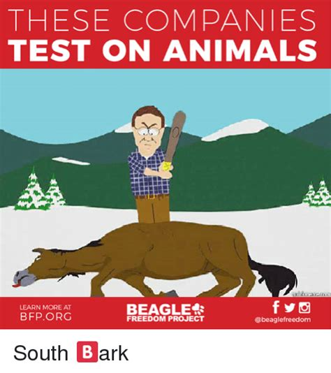 THESE COMPANIES TEST ON ANIMALS BEAGLE LEARN MORE AT ...